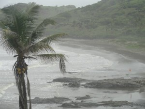 monsoon_goa_3